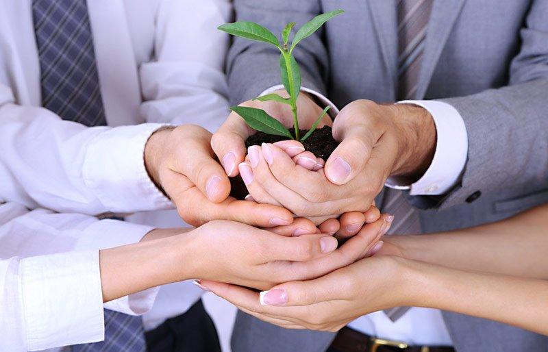Hands plant
